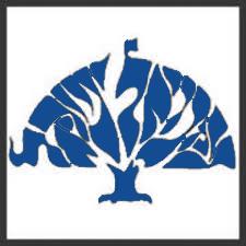 Congregation Emanuel Israel Logo